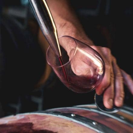 Pinot Noir Aroma Chemistry