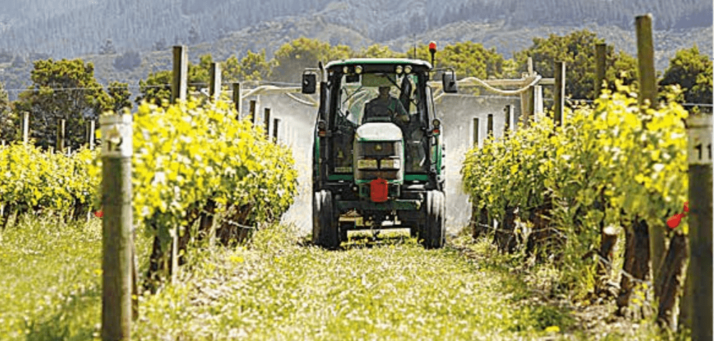 Spray protocols to quantify and optimise spray deposits applied to dormant grapevines